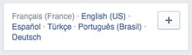 Types of Facebook Language